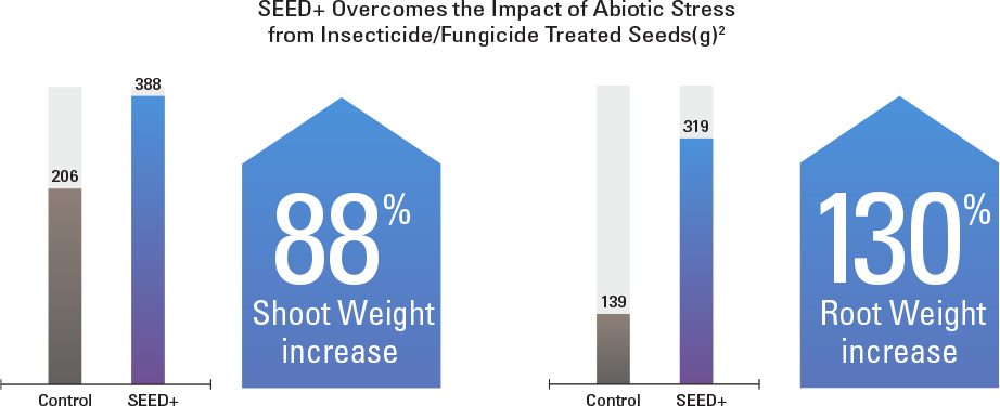 SEED+ overcomes abiotic stress from insecticide/fungicide treated seeds. It resulted in an 88% increase in shoot weight and a 130% increase in root weight.